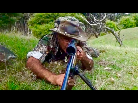 Hunting Rusa deer in New Caledonia part 10(Hunting in the roar)