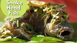 Cooking Snake Head fish in Southern Thailand