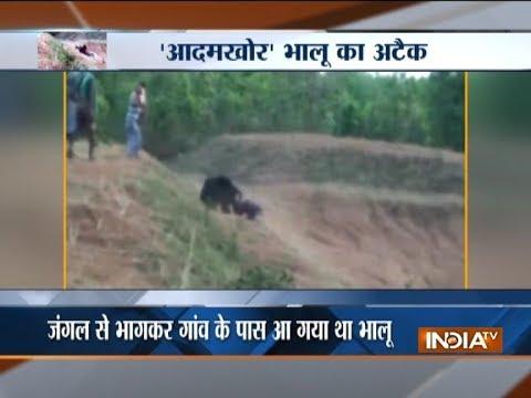 Caught on Camera: Bear attacks man in Odisha