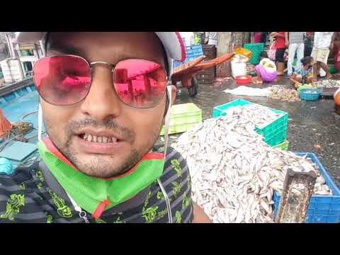 Mumbai Biggest Wholesales Fish Market  Sassoon Dock At Colaba
