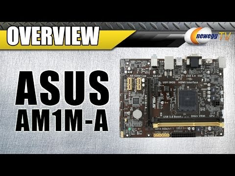 ASUS AM1M-A Micro ATX AMD Motherboard Overview - Newegg TV