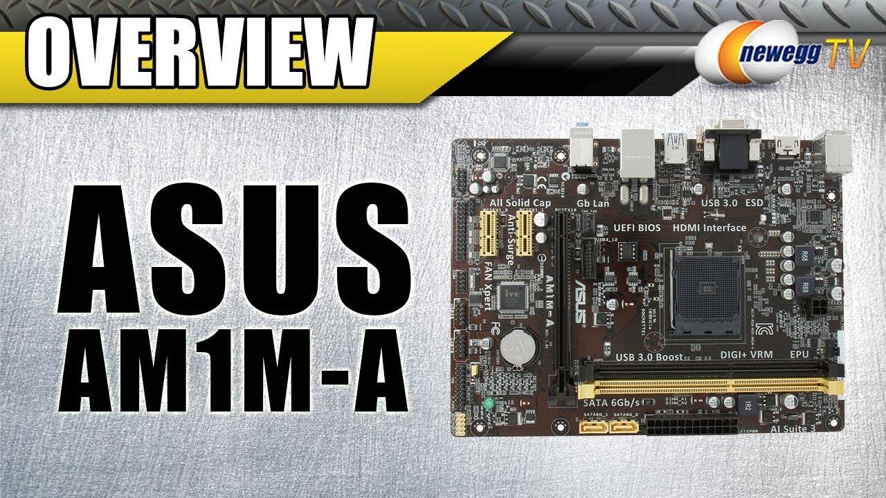 ASUS AM1M-A REALTEK LAN WINDOWS 8.1 DRIVER