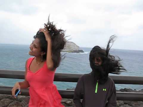 Windy Day - YouTube