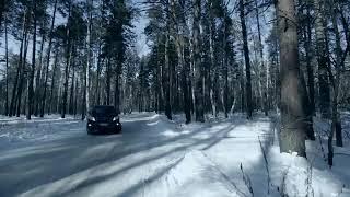 В лес за подарок на 23 февраля