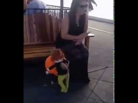 pumpkin carrying dog costume youtube. Black Bedroom Furniture Sets. Home Design Ideas