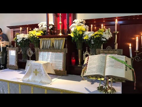 Traditional Latin Mass of Tuesday 11th August 2020 at St Anne's - St Philomena, Martyr from YouTube · Duration:  41 minutes 41 seconds