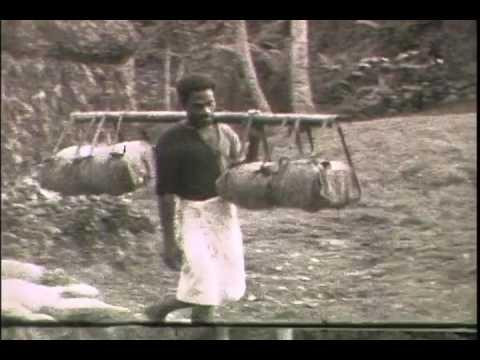 1934 Inner Viti Levu, and the Navua River.