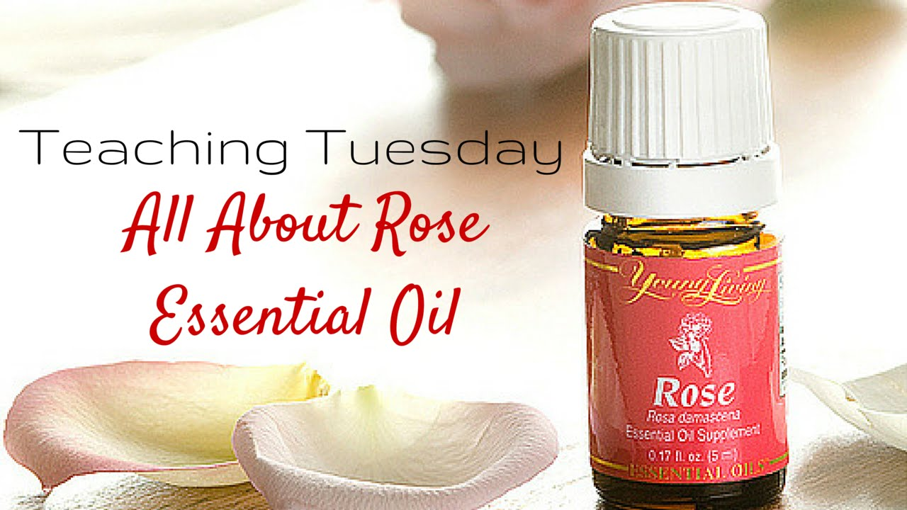 Rose Essential Oil Teaching Tuesday Youtube