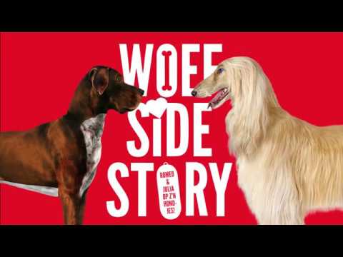 Theater Rotterdam - Woef Side Story   | wo 14 feb 19.00 uur Agnietenhof Tiel
