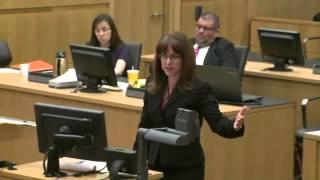 "Video Jodi Arias' Own Defense Witness Calls Her: ""A Perpetrator of a Horrendous Crime"" download MP3, 3GP, MP4, WEBM, AVI, FLV November 2017"