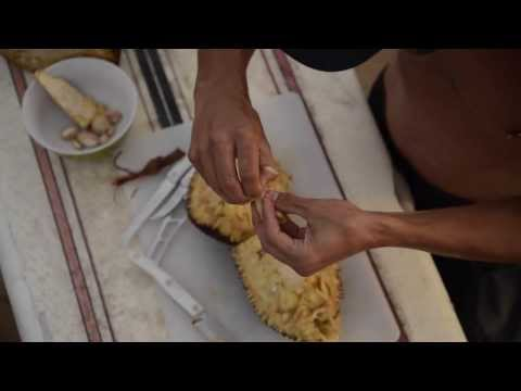 How To Cut, Open, Prepare, And Eat A Delicious Jackfruit! A Tutorial By Hawaiian Ola