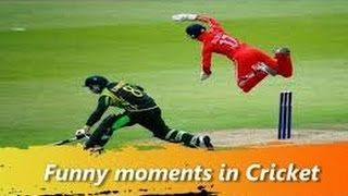 Most Funny Cricket Moments of History compilation 2017