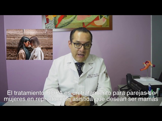 Dr. Proud: Método de reproducción asistida, ROPA