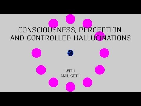 Consciousness, perception, and controlled hallucinations with Anil Seth