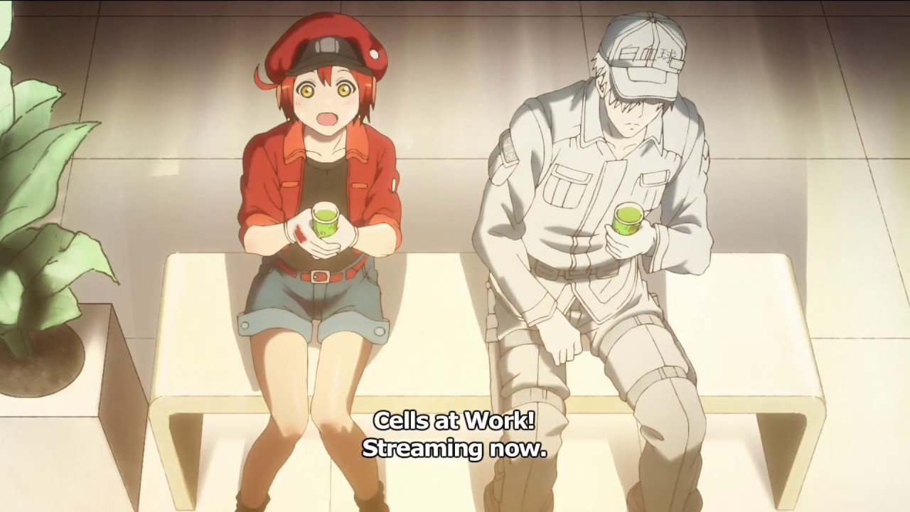 Cells At Work Stream