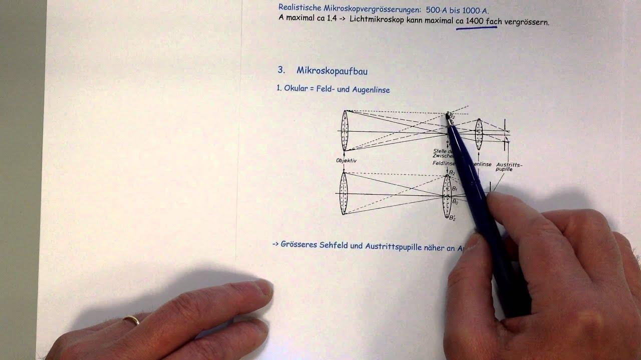 Mikroskop vergrösserung auflösung sehfeld beleuchtung und