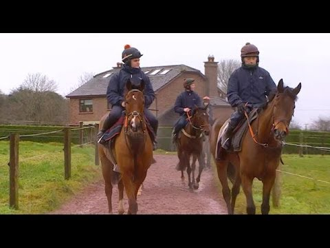 Sea Light and the Come Home Sober syndicate | RTÉ Racing