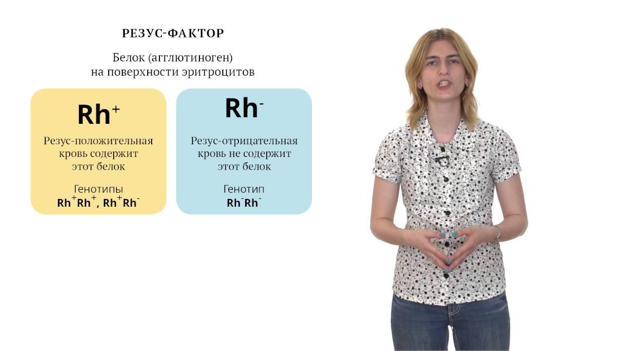 Видео решения генетических задач как решат текстовые задачи на проценты