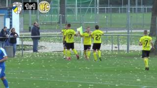 10. Spieltag  FC CZ Jena - VFC Plauen  1:2