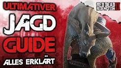 Der beste Jagd Guide - Alles erklärt - Red Dead Redemption 2 Deutsch Tipps & Tricks