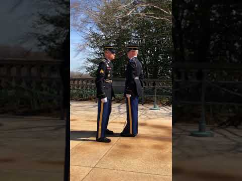 Changing of the guard ( tomb of the unknown soldier)