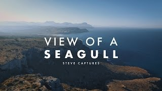VIEW OF A SEAGULL | Mallorca Aerial Video in 4K | Diary #5
