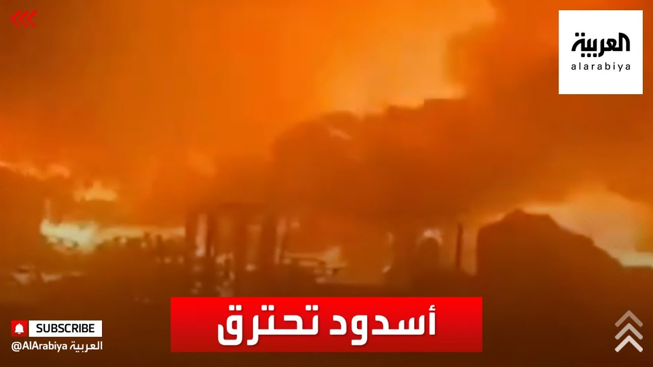 دمار كبير نتيجة سقوط صواريخ أطلقت من غزة على مدينة أسدود  - نشر قبل 4 ساعة