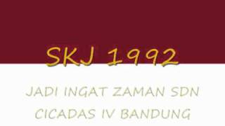 SKJ 1992 wmv