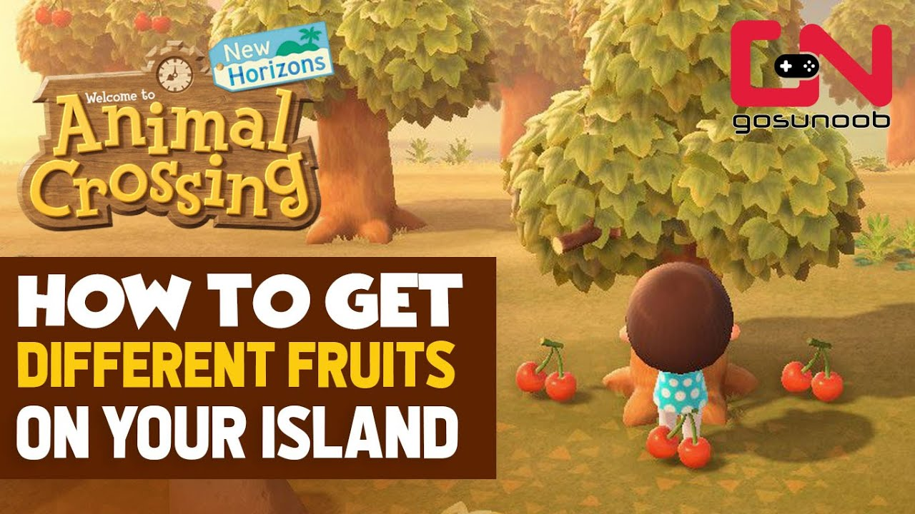 How To Get Different Fruits On Your Island In Animal Crossing New Horizons Youtube