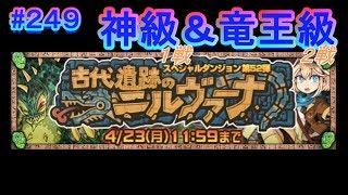 第52弾スペダン 『古代遺跡のニルヴァーナ』神級1戦&竜王級2戦!です(^...