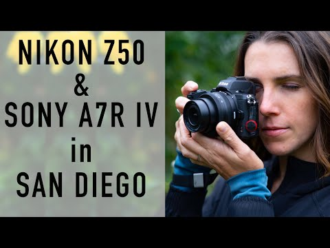 Samples! Wide angle, low light, Telephoto, San Diego. Nikon Z50 and Sony a7R IV. Review prep.