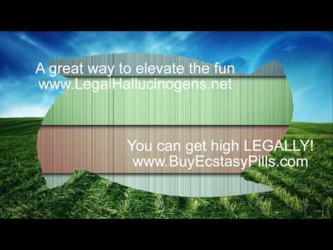 Legal Highs Halifax