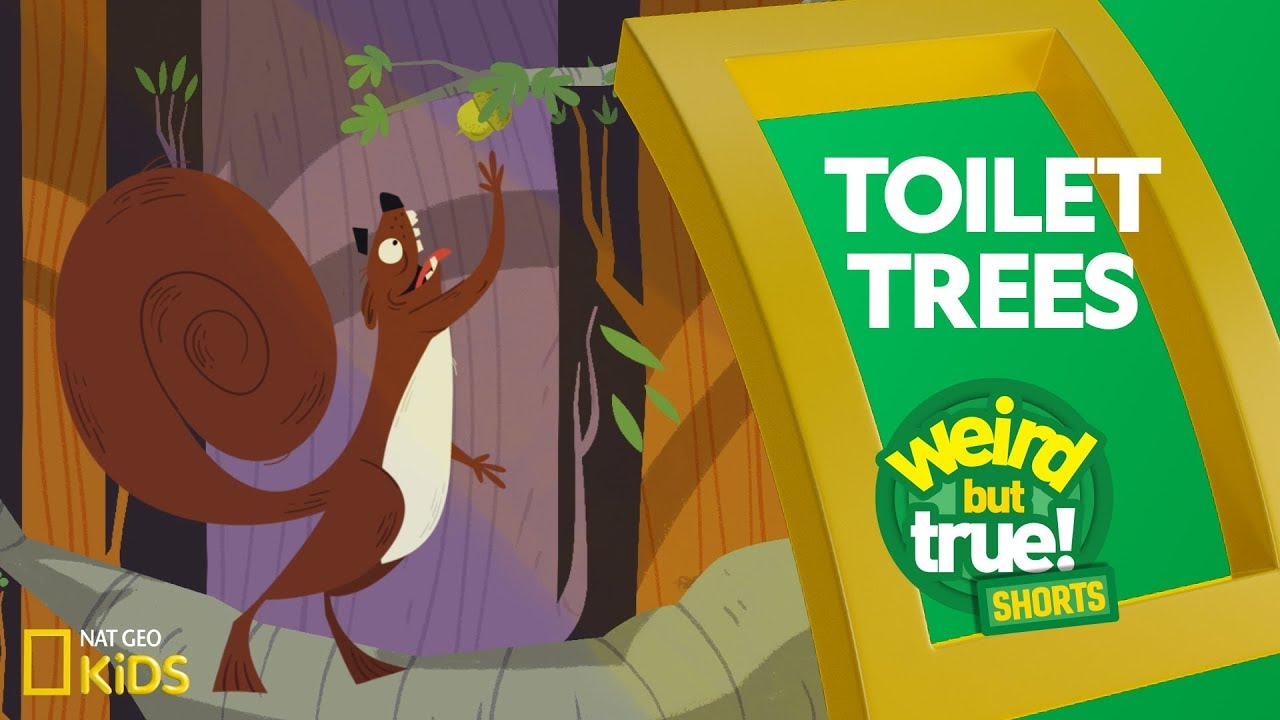 Toilet Trees | Weird But True! Shorts