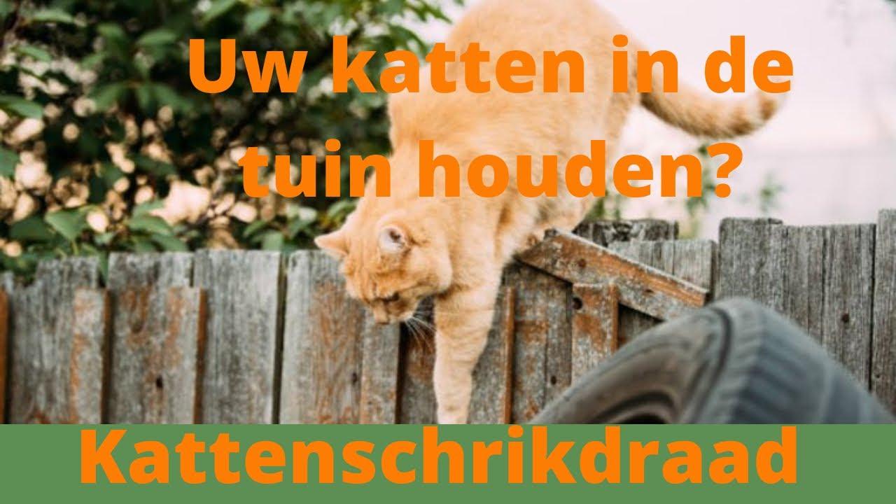 Kattenschrikdraad op schutting en uw katten blijven in de tuin youtube