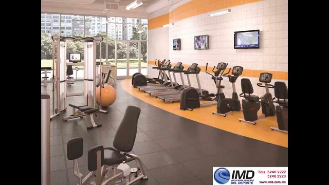 Equipo para gimnasio venta y renta los mejores aparatos - Equipamiento de gimnasios ...