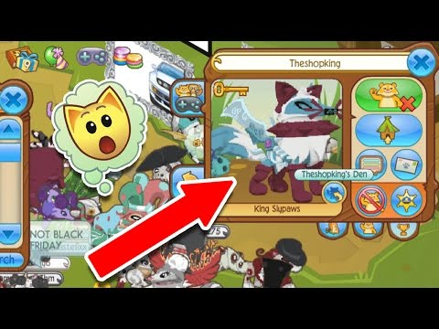 The RAREST Animal Jam Outfit?