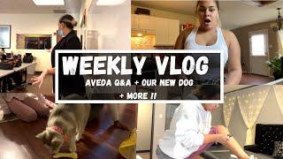 WEEKLY VLOG | AVEDA Q&A + …