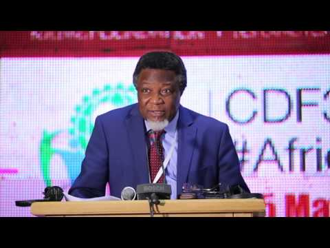 3rd Pan-African Capacity Development Forum