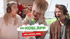 Digitalt Kosläpp på Arlagård i Hälsingland