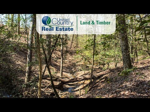 44 Acres Undeveloped Residential Land | Utility Access, RD Frontage, Value Price
