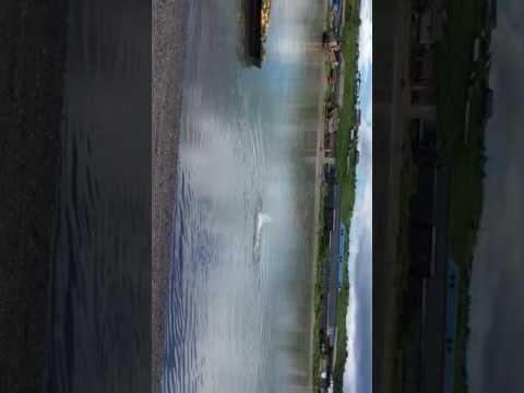 Озерновский. Путина 2016 купание в реке Озерной