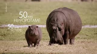 Doku -  Umwelt und Natur Tierisch alt!(1 von 5)   Lange leben