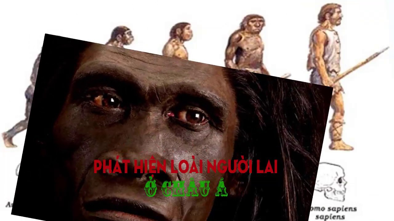 Phát hiện loài người lai ở Châu Á