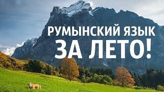 Румынский язык для начинающих в СПб