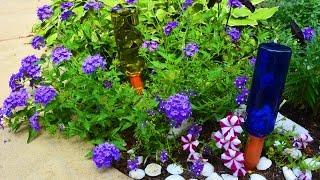 Watering Your Garden Hacks Video [Tips & Book Trailer]
