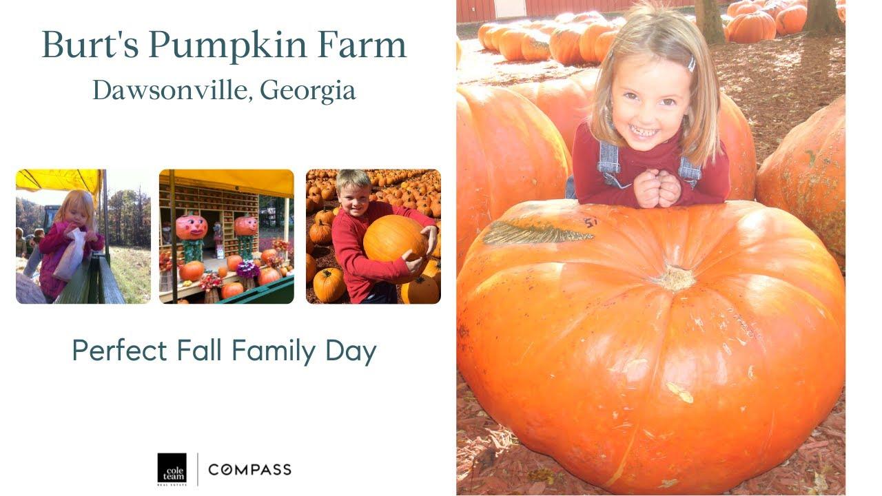 Perfect Fall Family Day at Burt's Pumpkin Farm in Dawsonville, Georgia