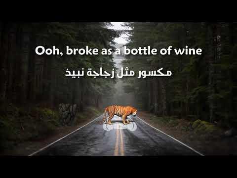 OneRepublic, Seeb - Rich Love مترجمة عربي