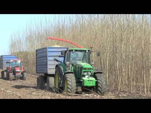 сборка быстрорастущих плантаций