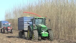 сборка быстрорастущих плантаций Навесной измельчитель урожай щепа (Schradenholz UG Germany)