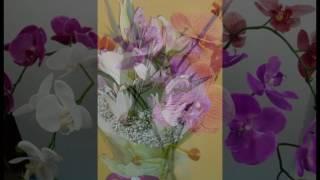 Karangan bunga anggrek aneka Jenis yang Cantik